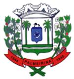 Câmara Municipal de Palmeirina